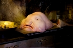 """LumpFish"" in Columbia Pictures' MEN IN BLACK 3."