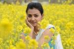 Actress Radhika Apte Latest Cute Photos (8)