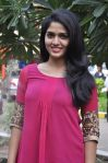 Neerparavai Press Meet (4)