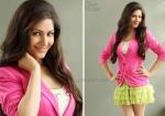 Actress Gauri Munjal Photoshoot (1)